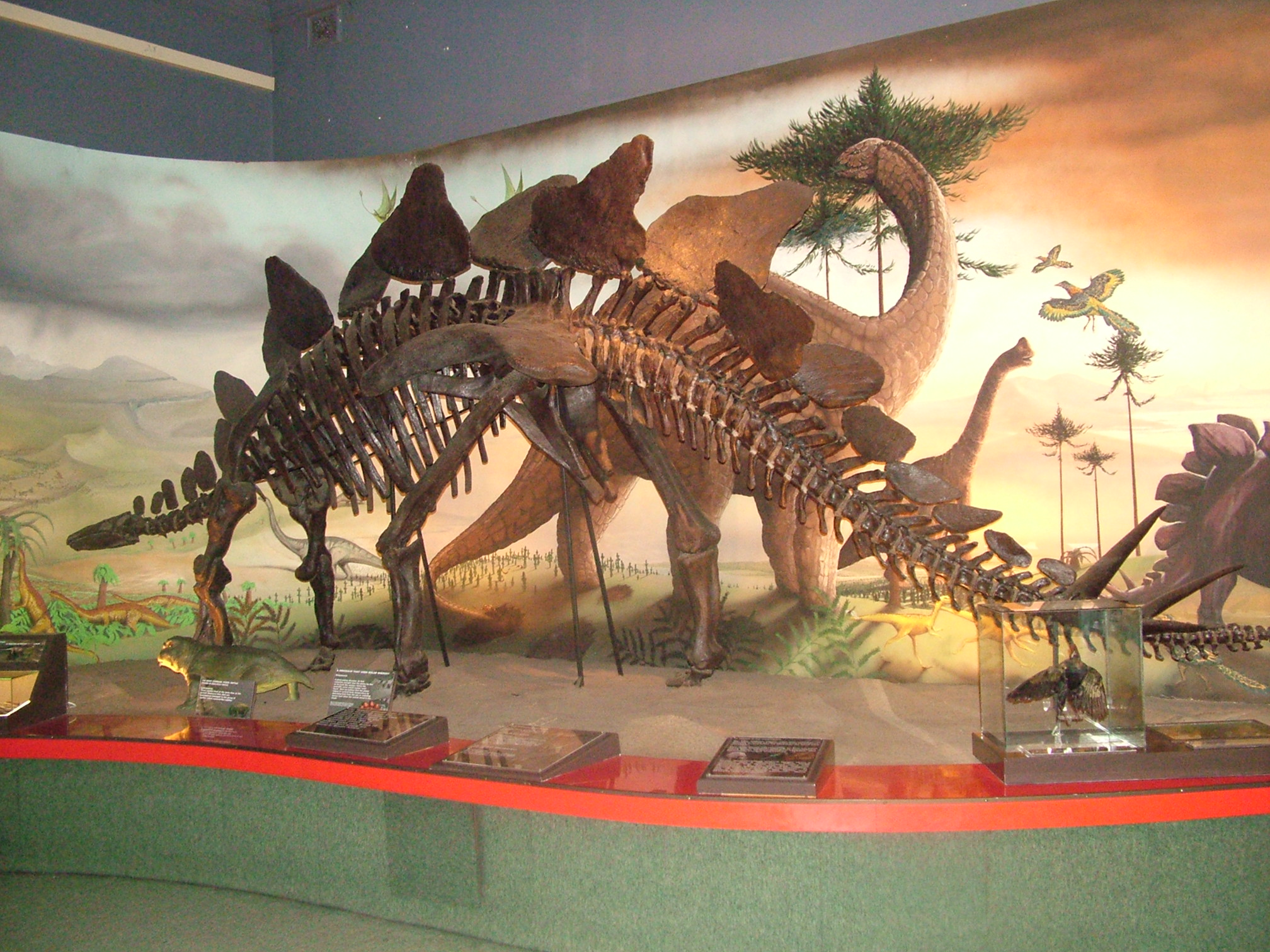 KZN Museum