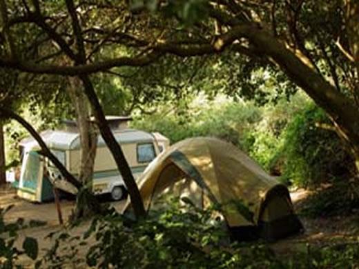 Cape Vidal Camp