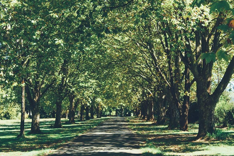 Moorcroft Manor****